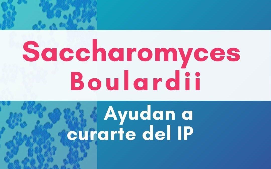 Saccharomyces Boulardii te ayuda a mejorarte del Intestino Permeable