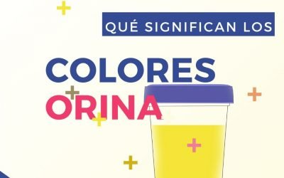 El color de la orina